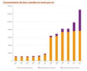 consommation de bois cumulee en tonne par an